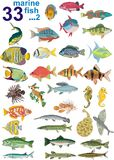 Set - 33 marine fish. Stock Photos