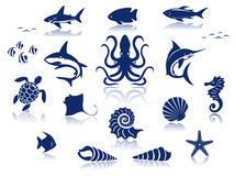 Set of marine life animals Royalty Free Stock Images