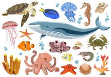 Set of marine and oceanic fauna inhabitants. Vector illustration. Vector collection of inhabitants and objects of sea fauna of octopus, whale, jellyfish, shrimp Royalty Free Stock Photography