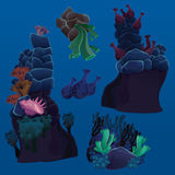 Set of marine plants, corals and rocks Stock Images