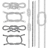 Set of marine rope, knots. Vector elements on a white background. Knots and ropes set. Isolated elements for design. Vector illustration Royalty Free Stock Photography