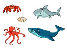 Set of marine sea life animals. With red crab, red octopus, shark, seashell and whale in cartoon style Royalty Free Stock Photo