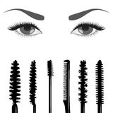 Set of mascara and eyes Stock Photos