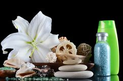 Set for massage and a peeling - SPA-procedures Stock Image