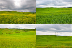 Set of Meadows Royalty Free Stock Photography