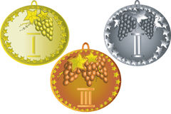 Set medals with grape Royalty Free Stock Image