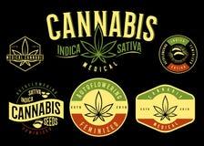 Set of medical cannabis emblem, logo . classic vintage style.  Royalty Free Stock Photos