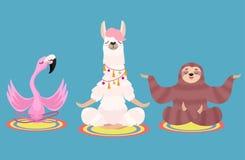 Set of meditating animals: sloth, llama and flamingo isolated on a blue background. Vector illustration.