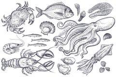 Set Meeresfrüchte Lizenzfreies Stockfoto