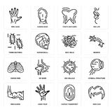 Set of Men Hair, Human Fingerprint, Elbow, Big Cellule, Ribs, Skin Cells, Three Bacteria, Tooth and Gums, Hand icons. Set Of 16 simple  icons such as Men Hair Stock Images