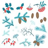 Set of Merry Christmas stylized winter branches Royalty Free Stock Photography