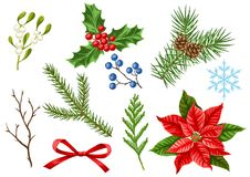 Set of Merry Christmas winter plants. Holiday decoration. Forest branches background in vintage style Royalty Free Illustration