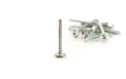 Set of metal screws on the white background Royalty Free Stock Photos