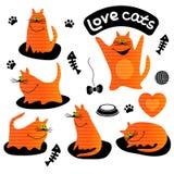 Set śmieszni imbirowi koty Zdjęcie Royalty Free