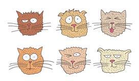 Set śmieszni koty Fotografia Stock
