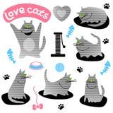 Set śmieszni szarzy koty Zdjęcie Stock