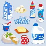 Set of milk products, dairy produce in colorful package icon. Butter, cheese, yogurt, whipped cream, vector illustration in flat style vector illustration