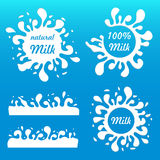 Set milk splash and blot. Royalty Free Stock Photo