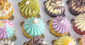 Set of Mini fancy cupcake. In a boxes Stock Images