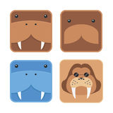 Set of minimal design flat walrus head, round edge Royalty Free Stock Image