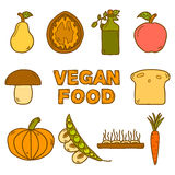 Set of modern icons in hand drawn style on vegan Stock Photo