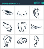 Set of modern  icons. Human body parts eyes nose, ear, hand, teeth, mouth, head, tongue, foot. Black signs Stock Image
