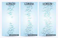 Set of modern vector flyers. Abstract background with molecule structure DNA and neurons. Medicine, science, technology. Banner, card,web, certificate. Vector Stock Photography