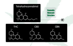 Set of 4 molecular structure chemistry formula tetrahydrocannabinol medical cannabis design Stock Photography