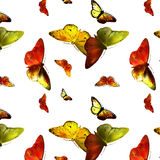 Set Monarch Butterfly with open wings Stock Photo