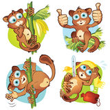 A set 1 of monkeys tarsiers Stock Photography