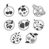 Set monochromatyczni logowie, znaki, odznaki, etykietki Royalty Ilustracja