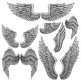 Set of monochrome bird wings of different shape in open position Royalty Free Stock Images