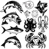 Set of monochrome freshwater and marine fish and shellfish Royalty Free Stock Images