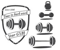Set of monochrome gym equipment. Icon, logo and designed elements. Vector illustration isolated on white Stock Images