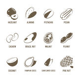 Set of monochrome, lineart food icons: nuts. Stock Image
