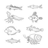 Set of monochrome vector doodle fishes and sea dwellers isolated on white background Stock Images