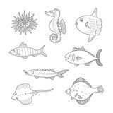 Set of monochrome vector doodle fishes and sea dwellers isolated on white background Stock Image