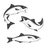 Set of monochrome vector fish Royalty Free Stock Photography