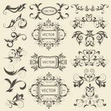 Set monograms, floral ornaments Stock Photo