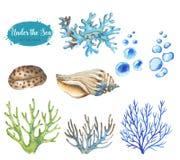 Set morscy przedmioty Zdjęcia Royalty Free