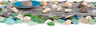 Set morze łuska na starym drewnianym tle Obrazy Stock
