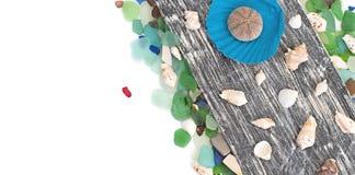 Set morze łuska na starym drewnianym tle Fotografia Stock