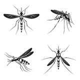 Set of mosquito Royalty Free Stock Photos