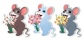 Set with mouse-02. Baby mouse with early daffodil. For congratulations on holidays March 8, birthday, anniversary. For banners, congratulatory products of your Royalty Free Stock Photography