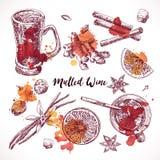 Set of mulled wine, hand drawn ingredients. Cooking aroma ingredient. Stock Images