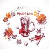 Set of mulled wine, hand drawn ingredients. Cooking aroma ingredient. Royalty Free Stock Image