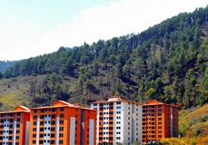 Colorful buildings with pine forest in the background royalty free stock photos