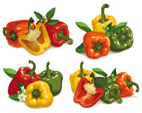 Set of multi colored pepper Royalty Free Stock Photos