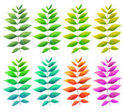 Set of multi-colored leaves, branches, painted in watercolor Stock Photography