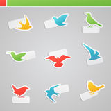 Set of multicolored birds with tags for message. Royalty Free Stock Photography
